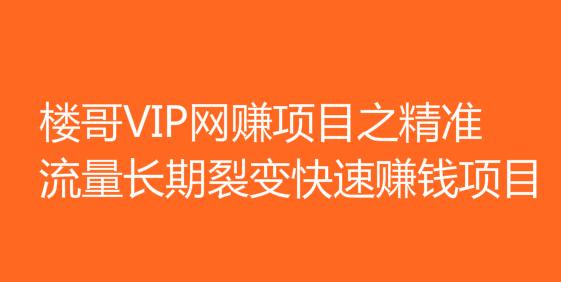楼哥VIP网赚项目之精准流量长期裂变快速赚钱项目