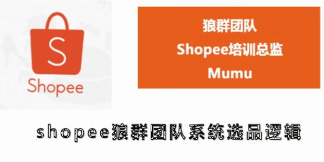 shopee虾皮全套课程【无水印】